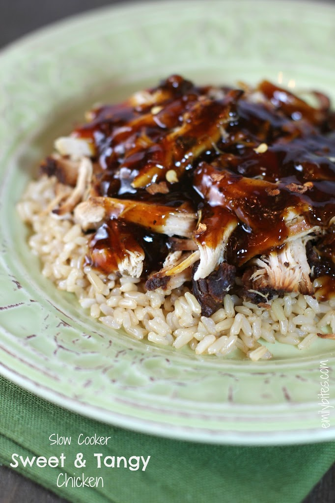 Sweet And Tangy Slow Cooker Bar-B-Q Pork Recipe — Dishmaps