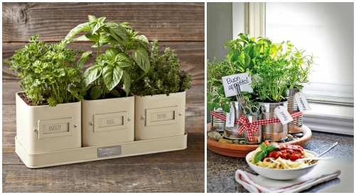 21 Gift Ideas for Healthy Cooks: Herb Garden