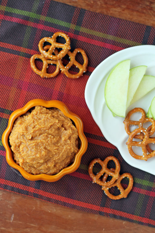 Pumpkin Spice Hummus overhead