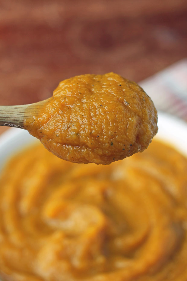 Mashed Butternut Squash on a spoon