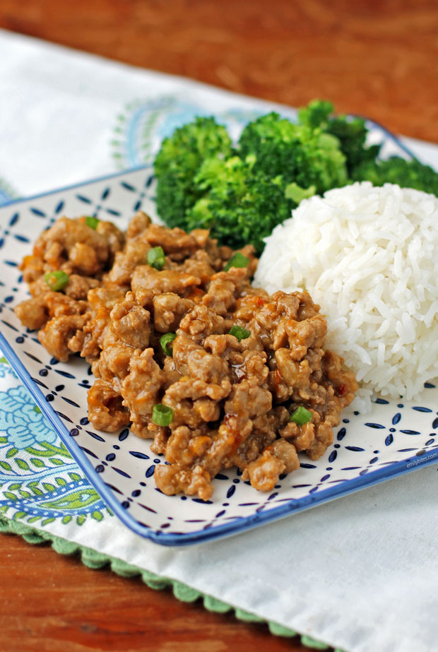 Orange Ground Turkey plated with rice and broccoli